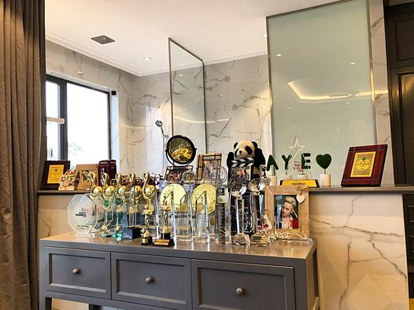 Cao Thái Sơn sống cùng mẹ tại căn biệt thự này. Trong hình là một góc nhỏ trưng bày những giải thưởng anh đạt được suốt những năm tháng hoạt động nghệ thuật.