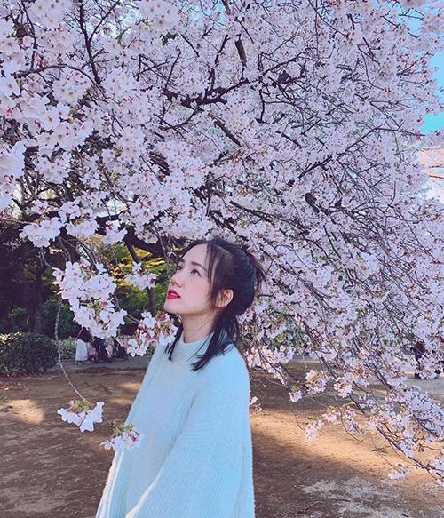 Phương Ly đọ sắc với những đóa hoa anh đào Nhật Bản.