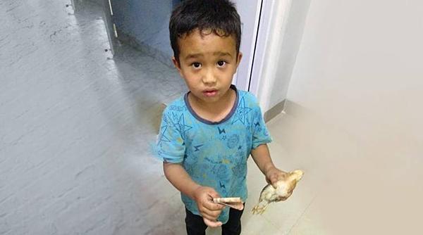 Cậu bé Ấn Độ mang con gà bị cán xe đến trạm y tế nhờ giúp đỡ.