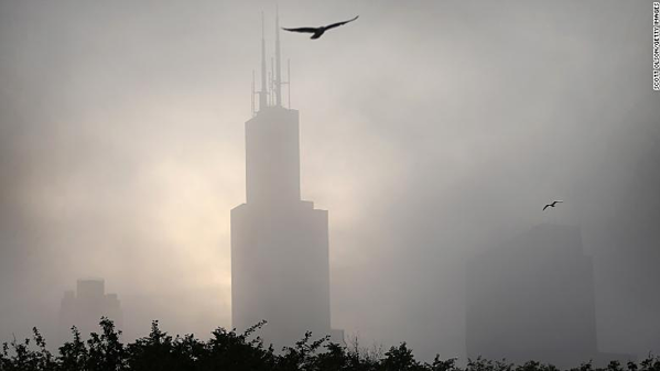 Chicago là thành phố nguy hiểm nhất đối với loài chim di cư.