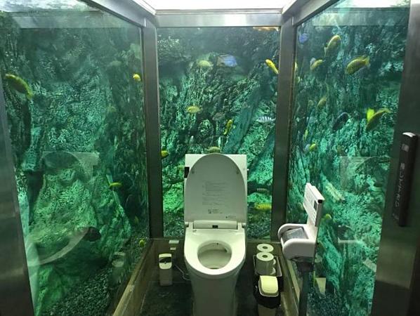 Nhà vệ sinh thủy cung ở Nhật Bản.