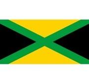 Bạn có nhớ màu chuẩn trên lá cờ của các quốc gia? (2) - 1