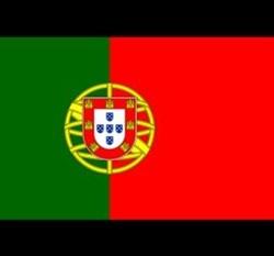 Bạn có nhớ màu chuẩn trên lá cờ của các quốc gia? (2) - 10