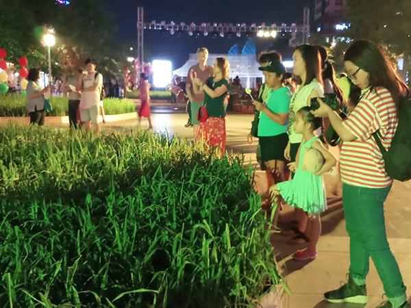 Festival nghệ thuật dân gian lần thứ nhất diễn ra ở phố đi bộ Nguyễn Huệ, TP HCM từ ngày 13-15/4/2019 đang thu hút sự quan tâm của nhiều người. Những ngày mở cửa vừa qua, nơi đây thu hút lượng du khách, các bạn trẻ đến tham quan và pose hình. Có một tiểu cảnh thu hút sự chú ý không nhỏ đó là ruộng lúa nước được dựng ngay giữa con đường nổi tiếng sôi động bậc nhất Sài thành.