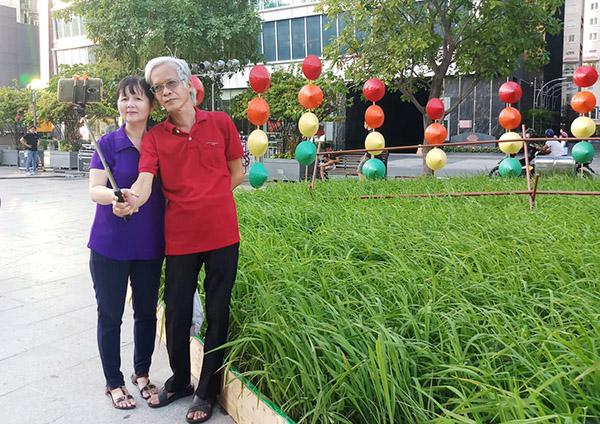 Người Sài Gòn thích thú với ruộng lúa trên phố đi bộ Nguyễn Huệ - 5