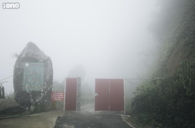 <p> Mây mù giăng lối trên đường vào Vườn quốc gia Tam Đảo.</p>