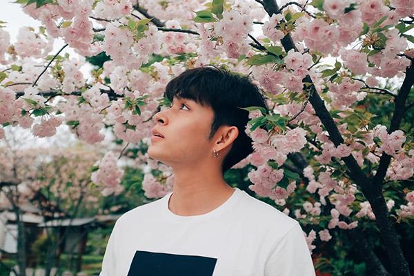Jun Phạm chụp ảnh bên hoa anh đào đẹp như hình tạp chí.