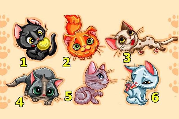 Trắc nghiệm: Chú mèo nào dưới đây là hiện thân của bạn?