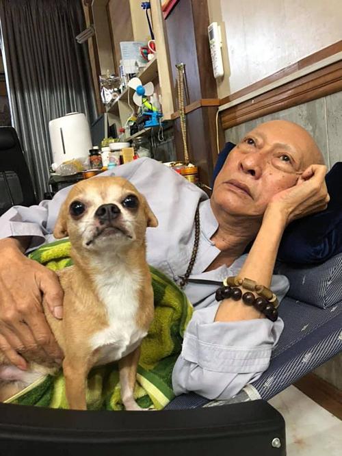 Lê Bình nuôi Lucky được gần 8 năm.