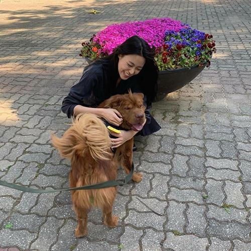 Seol Hyun cực kỳ yêu chó và thường bị thu hút bởi những chú chó khổng lồ.