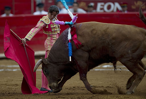 Hilda là nữ võ sĩ nổi tiếng ở Mexico.