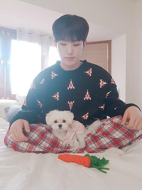 Hoshi (Seventeen) dành thời gian nghỉ ngơi bên chú cún cưng.