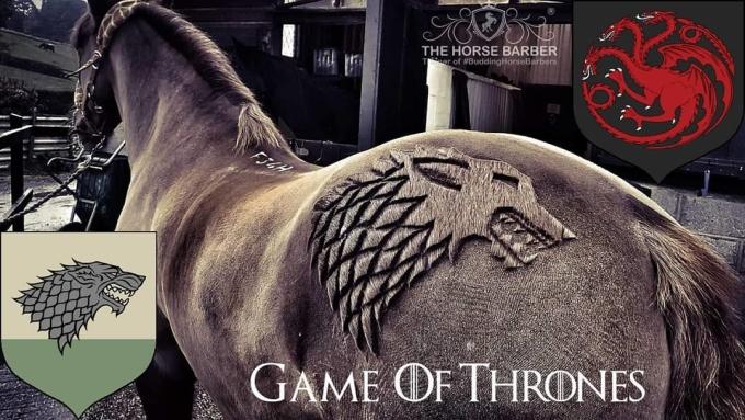 <p> Bức hình được lấy cảm hứng từ series phim nổi tiếng <em>Game of Thrones.</em></p>