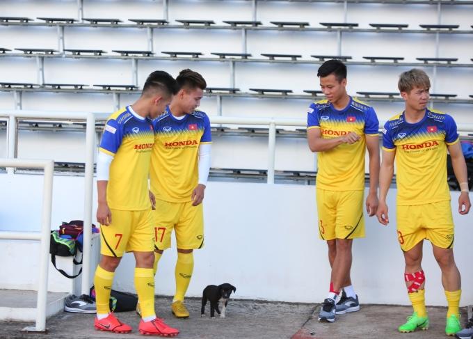"""<p> Khi phát hiện có một chú cún xuất hiện ở khu vực khán đài, các cầu thủ tỏ ra thích thú và chạy đến vui đùa. Hồng Duy, Văn Thanh, Quế Ngọc Hải, Công Phượng... có những phút giây thư giãn bên """"người bạn nhỏ"""".</p>"""