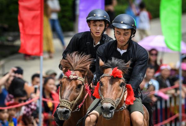 Ngựa không có yên cương, không bàn đạp và các nài ngựa không sử dụng roi quất, nhưng bằng chính đôi tay, đôi chân... những kỵ sỹ vùng cao đã phô diễn trọn vẹn kỹ năng điêu luyện nhất, đưa từng chú ngựa về đích trong sự tán thưởng của khán giả.