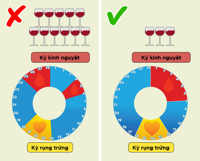 <p> <strong>Đồ uống mạnh có thể ảnh hưởng đến 'chu kỳ đèn đỏ'</strong></p> <p> Chính xác là do liều lượng, không phải do bạn có sử dụng đồ uống có cồn hay không. Nếu phụ nữ thường xuyên uống nhiều rượu, sẽ dẫn đến rối loạn kinh nguyệt. Lạm dụng rượu bia ảnh hưởng đến toàn bộ cơ thể, không chỉ hệ thống sinh sản.</p> <p> Các nghiên cứu cho thấy uống rượu vừa phải không phá hủy chu kỳ nguyệt san và không ảnh hưởng đến sức khỏe của bạn.</p>