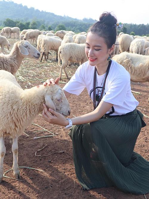 Angela Phương Trinh rạng rỡ giữa bầy cừu.