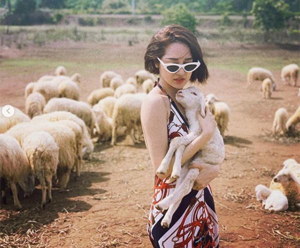 Bảo Anh bế cừu chụp ảnh đẹp như tạp chí.