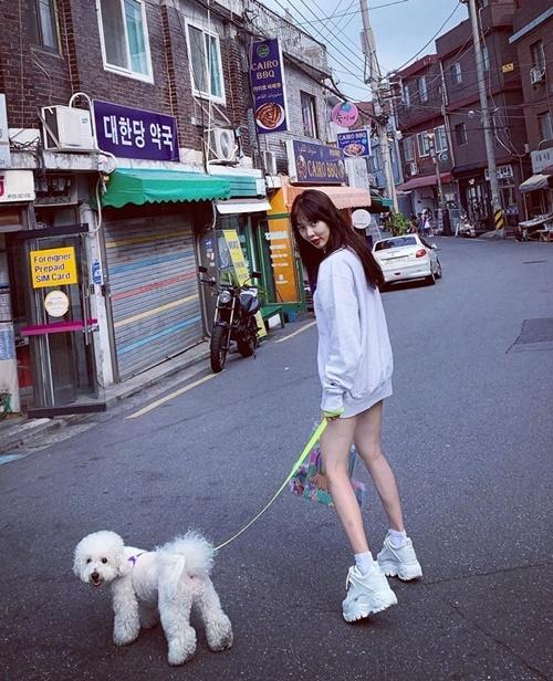 Hyuna mặc áo giấu quần gợi cảm dắt cún dạo phố.