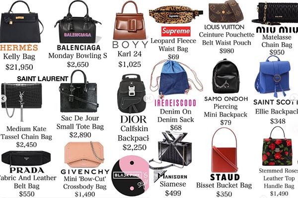 Lisa có khoảng 50 chiếc túi xách, trong đó có cả những thiết kế đắt đỏ như Hermes Kelly Bag giá 21.950 USD (khoảng 500 triệu đồng) và cả những dòng túi bình dân giá chưa đến 100 USD. Bộ sưu tập của cô nàng có giá trị khoảng 107.000 USD (tương đương 2,5 tỷ đồng).