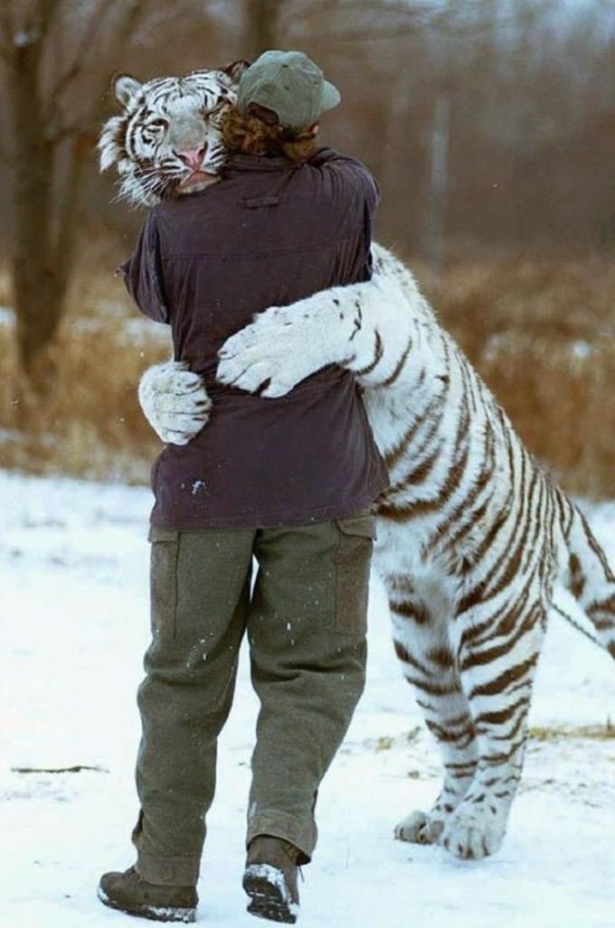 <p> Giữa con người và loài vật hung dữ nhất vẫn có những mối liên kết khó tách biệt.</p>