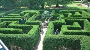 Trắc nghiệm: Khám phá chuyện tình yêu đời bạn qua khu vườn trong mơ - 4