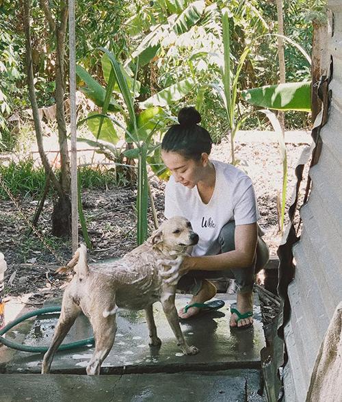 Băng Di tự tay tắm cho chú chó khi về quê.