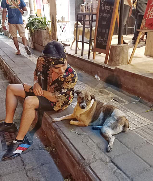 Jun Phạm hóm hỉnh than thởvới fan khi nói chuyện với chú chó mà bị bơ đẹp.
