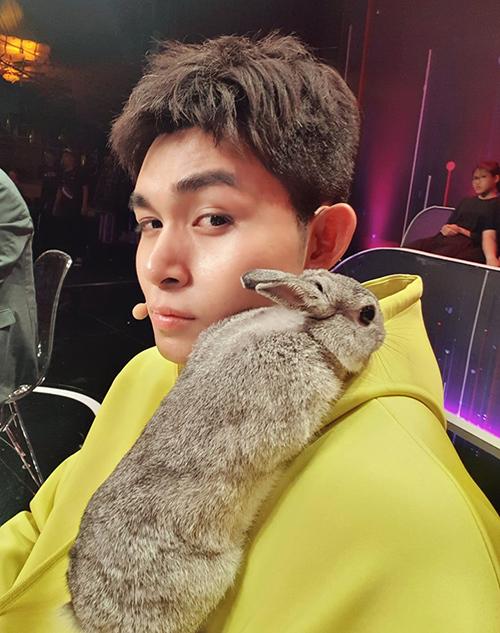 Jun Phạm không dám nhúc nhích vì có chú thỏ xám dễ thươngnằmtrên vai.