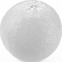 Đố bạn tìm ra quả bưởi  - 1