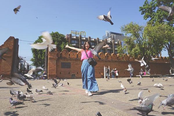 Khoảnh khắc đàn chim bay lên
