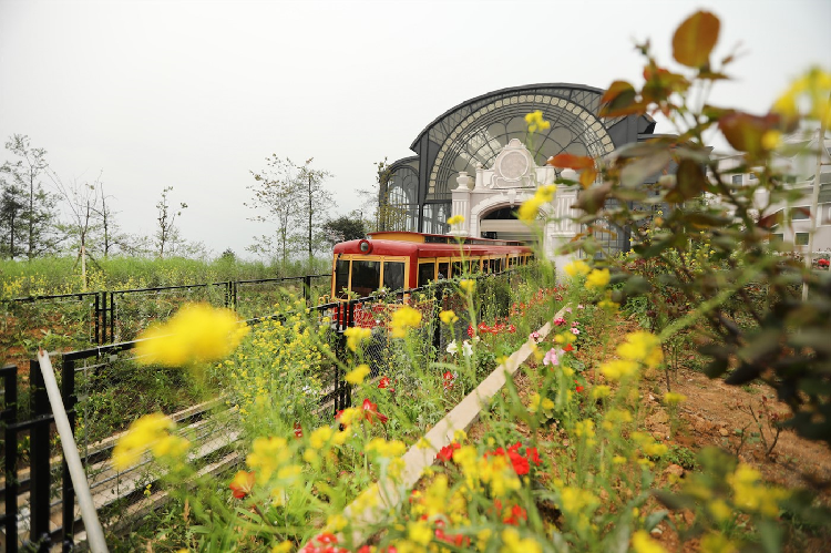 Xuất phát từ trung tâm thị trấn Sa Pa nối liền tới Fansipan, tàu hỏa leo núi Mường Hoa mở ra một hành trình kỳ diệu với khung cảnh thiên nhiên hùng vĩ, thung lũng Mường Hoa bảng lảng trong sương, những nếp nhà ẩn hiện trong khói chiều...