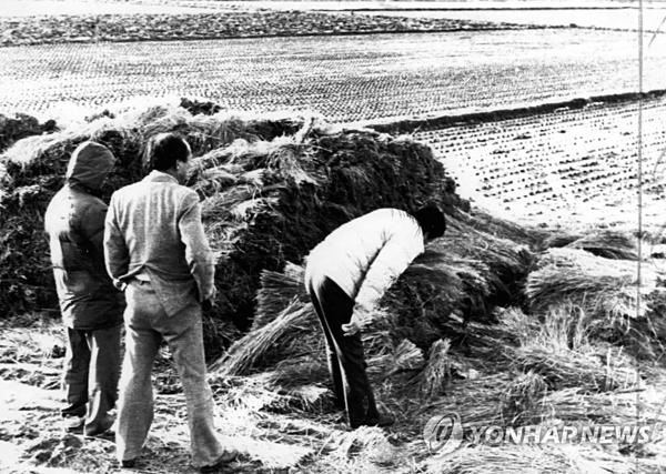 Cảnh sát điều tra tại hiện trường vụ giết người thứ năm ở Hwaseong năm 1987. Ảnh: Yonhap.