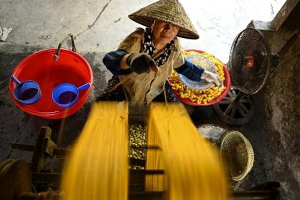 Làng tơ trăm năm ở Nam Định lên báo Pháp