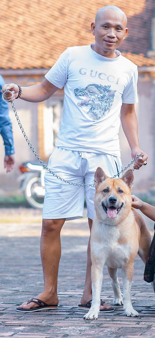 Một chú chó ta được mang đến casting.