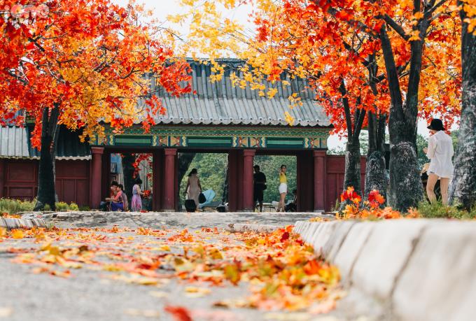 """<p> Bên cạnh đó còn có mô hình là những ngôi nhà cổ của Hàn Quốc, được thiết kế công phu làm cho không gian nơi đây càng thêm đa dạng, hấp dẫn cho nhiều du khách thích """"sống ảo"""".</p>"""