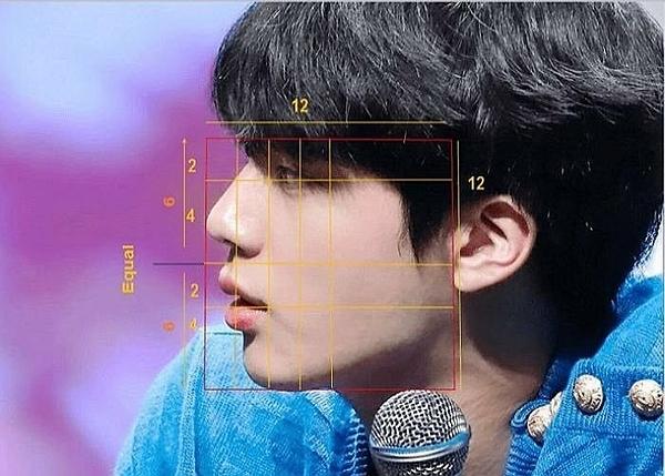 Theo một cách tính tỷ lệ, góc nghiêng của Jin là chuẩn mực trong giới phẫu thuật thẩm mỹ.