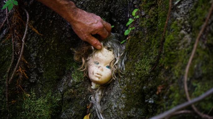 """<p> Con đường mòn đi bộ khiến nhiều người bị phen """"thót tim"""" khi thấy những đầu búp bê tơi tả gắn vào thân cây hay nằm giữa đám lá ven đường.</p>"""