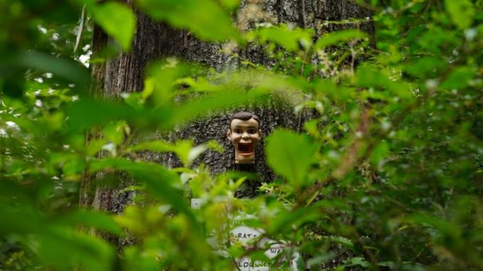 <p> Những món đồ kỳ quái được trang trí như tác phẩm nghệ thuật nhưng trở thành điều ám ảnh với nhiều du khách đi ngang qua.</p>