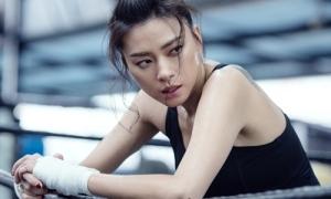 Ngô Thanh Vân tìm kiếm đả nữ mới cho dự án 'Thanh Sói'
