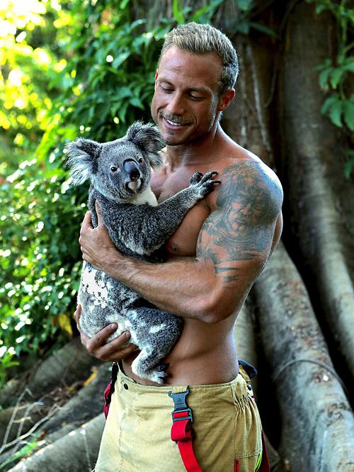 Năm nay, những lính cứu hỏa đã bán nude để tạo dáng cùng với động vật trong bộ lịch hoàn toàn mới mang tên Australian Firefighters Calendar 2020.