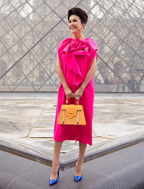 Ở Việt Nam, túi Goyard bắt đầu được mỹ nhân Việt ưa chuộng. Diễm My sở hữu bộ sưu tập túi Goyard đồ sộ hơn cả với 3 mẫu 3 màu gồm đen, đỏ và vàng cam. Những thiết kế này đều được cô sắm trong các chuyến du lịch Paris.