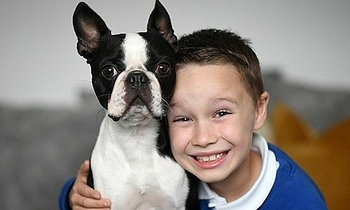 Cậu bé tìm lại được cún cưng nhờ bức vẽ kute