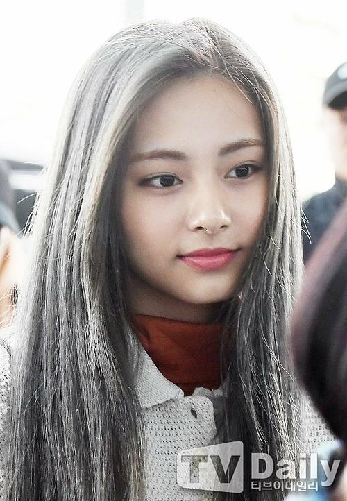 Nhan sắc của Tzuyu chưa bao giờ làm fan thất vọng. Tên tuổi cô nàng leo top tìm kiếm của Daum khi vừa xuất hiện ở sân bay.