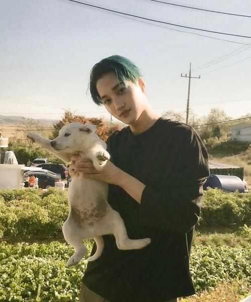 Ánh mắt dịu dàng của Kai khi chụp hình cùng cún con khiến các fan mê mẩn.