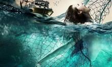 Phim kinh dị về tàn sát người cá