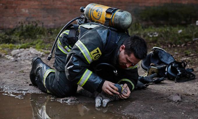 Lính cứu hỏa giúp mèo thở oxy trong đám cháy