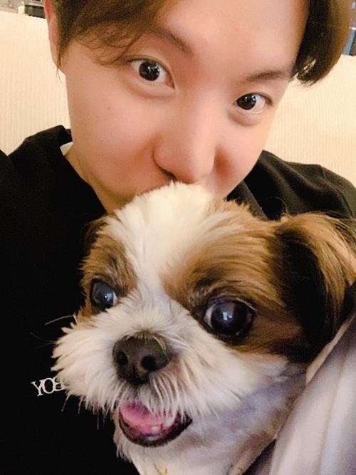 J-Hope (BTS) mượn cún cưng của V để ôm ấp.