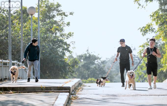 <p> Cuộc thi thu hút nhiều người tham gia, với nhiều chủng loại chó khác nhau như Poodle, Husky, Golden...</p>