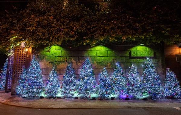 Ngôi nhà của Đàm Vĩnh Hưng nổi bật nhất dãy phố khi trang trí bằng hàng nghìn bóng đèn LED.